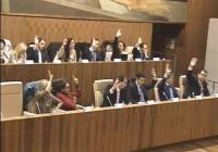 Votación en el pleno de Leganés
